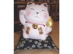 Zabuton Japanische Katze Ausverkauft(S..