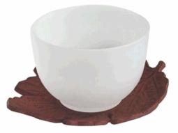 Teecup Glas mit Untersetzer 5 Stück