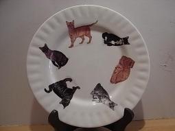 Cats Galore Dessertteller