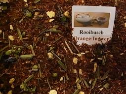 Rooibusch Orange-Ingwer