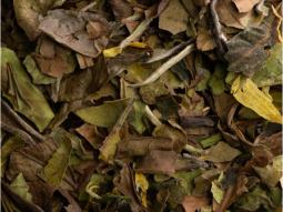 Weisser Tee Bio Earl Grey-Vanille