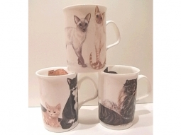 Cats Galore Henkelbecher Fine Bone China