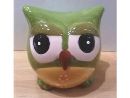 Spar-Eulen grün